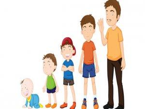 Çocuklarda gelişim evreleri nelerdir?