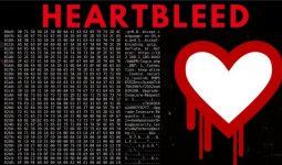 Heartbleed Açığı Nedir?