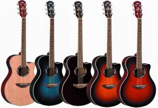 Hangi Gitar Başlangıç İçin Uygundur