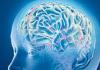 Beyin Apsesi Nedir Nasıl Tedavi Edilir?