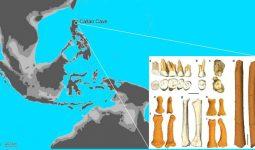 Yeni Keşfedilen İnsan Türü Homo Luzonensis