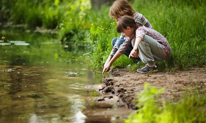 Doğanın Çocuklar İçin Faydaları Nelerdir?