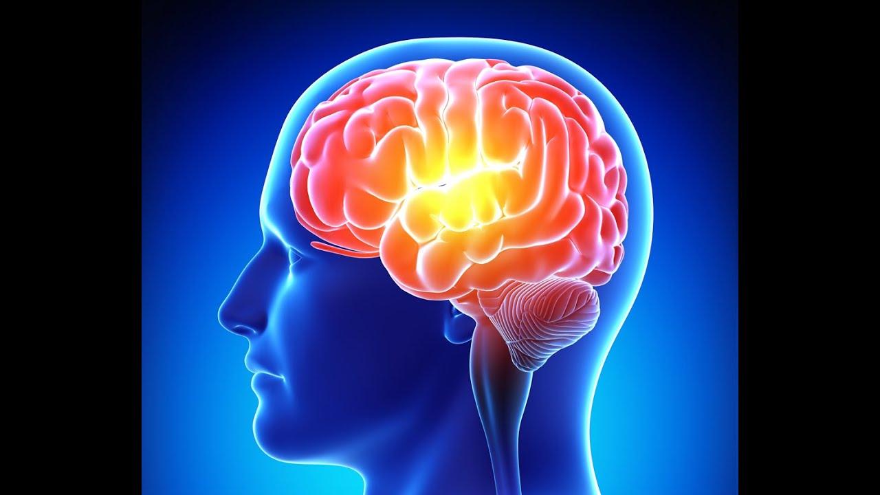 Güçlü Bir Hafızaya Sahip Olmanın Yolları Nelerdir?