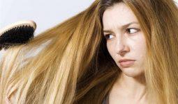 Saç Dökülmesini Engelleyen 5 Gıda