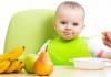 Ek Gıda Döneminde (0-6 ay ve üstü) Bebeklere Hangi Besinler Verilmelidir?