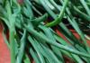 Taze Yeşil Soğanın Faydaları