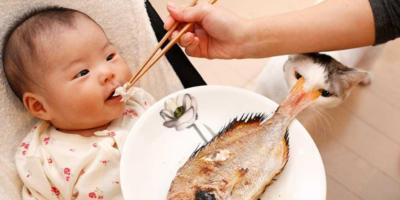 Bebeklere Balık Eti Ne Zaman Yedirilmeli