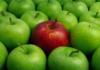 Kırmızı ve Yeşil Elma Tüketmenin Faydaları