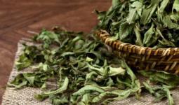 Melisa Çayı Nedir Yararları Nelerdir
