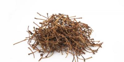 Kiraz Sapı Çayı Zayıflatır mı?