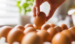 Günlük olarak Yumurta Tüketmenin Faydaları