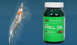 Kaç Çeşit Krill Yağı Vardır?
