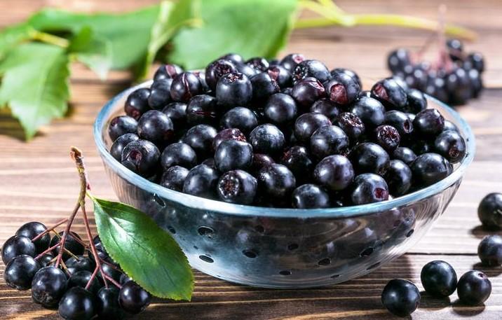 Aronya Meyvesinin Yararları