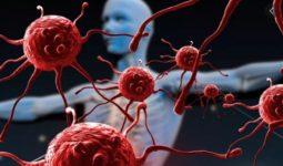 Bağışıklığımızı Güçlendirecek Besinler